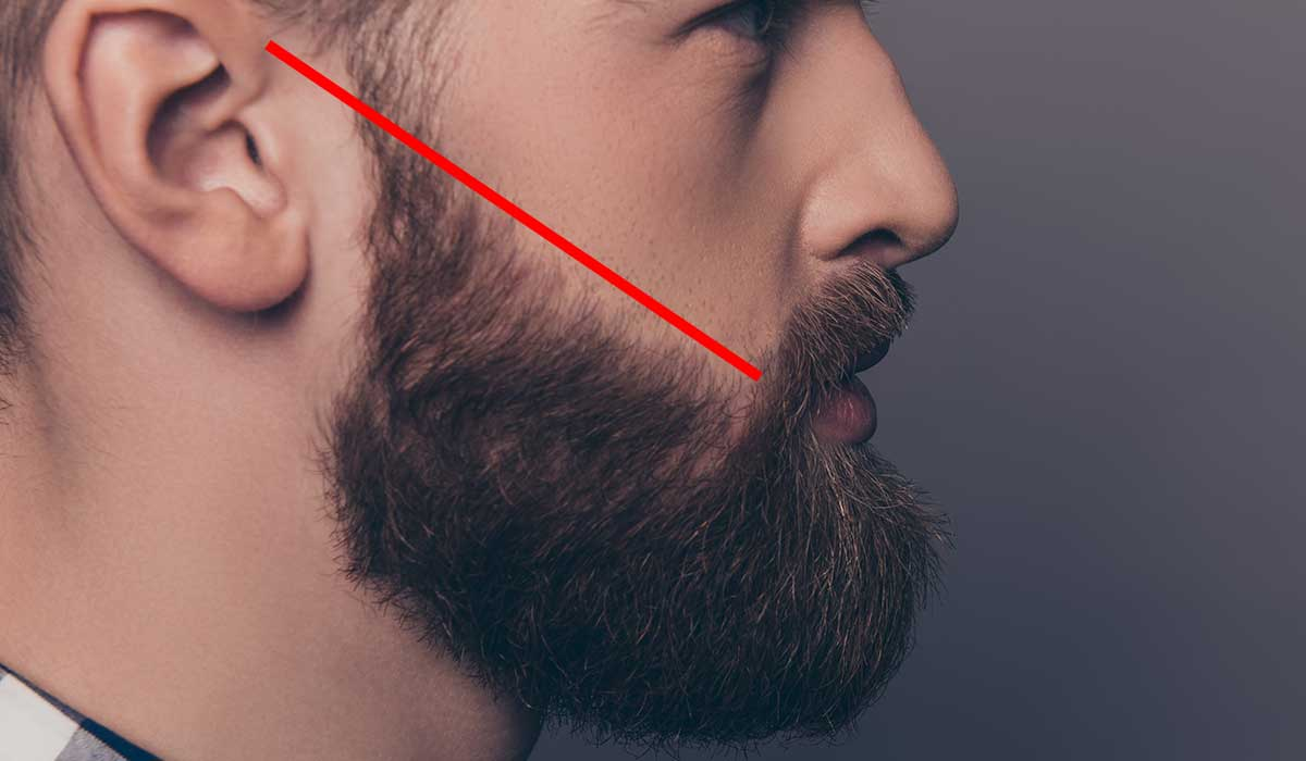 Lignes de joues barbe